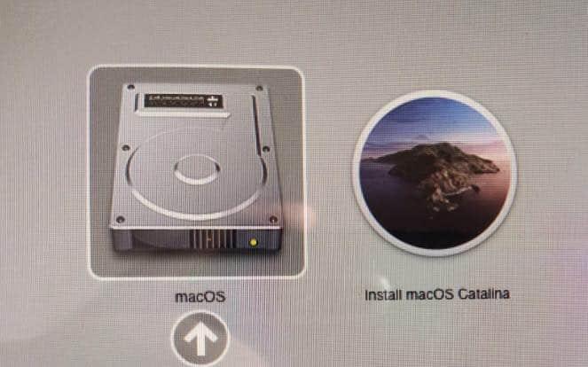 macOS Catalina USB windows