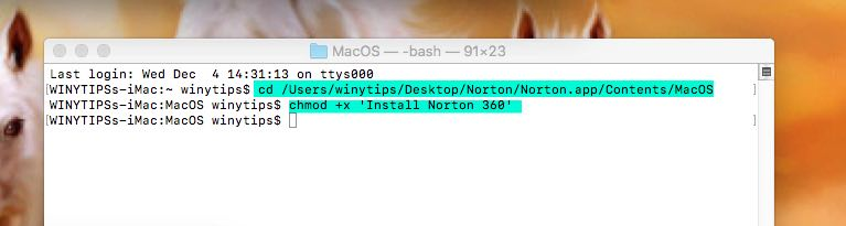 make Norton macOS executable